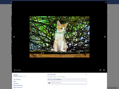 Facebook with theatre mode
